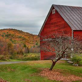 Roadside Red Barn - Vermont by Joann Vitali