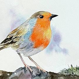 Robin on Rock by Hilda Vandergriff