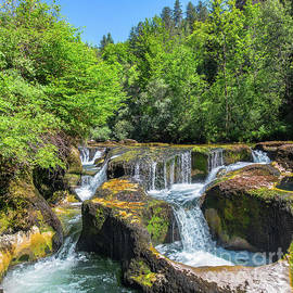 Rock erosion from waterhole with waterfall in middle of forest by Gregory DUBUS
