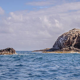 Rocks and Sea by Andrew Wilson