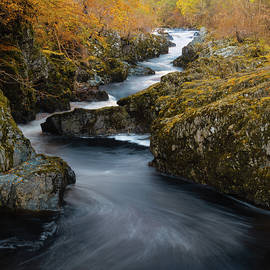 Rocks of Solitude by Dave Bowman