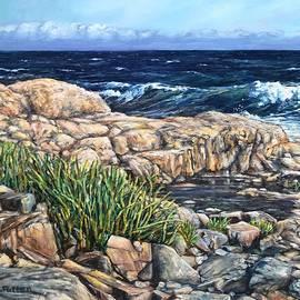 Rocky Cape Ann Coast by Eileen Patten Oliver