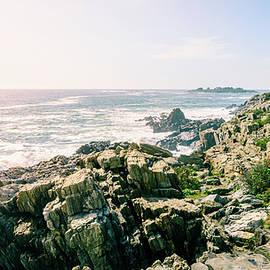 Rocky Coastline of Bailey Island by Alexey Stiop