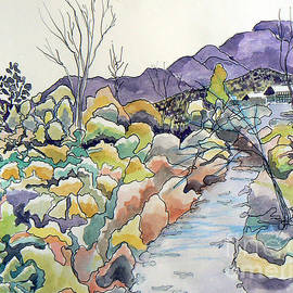 Rocky Creek Landscape by Michele B Naquaiya