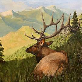 Rocky Mountain National Park by Alan Lakin