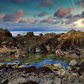 Rocky Pacific Tide Pool by Robert Blandy Jr