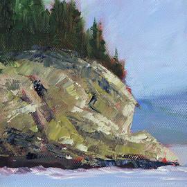 Rocky Shore by Nancy Merkle