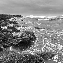 Rocky Surf by Jerry Abbott