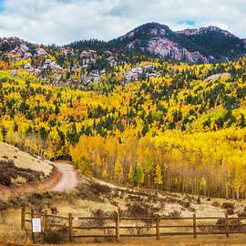 Rolling Aspen Hills by Nancy Carol Photography