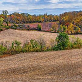 Rolling Hills - Farmland - Iowa by Nikolyn McDonald
