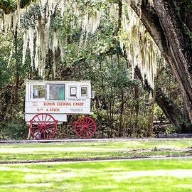 Roman Candy Cart Framed by Spanish Moss by Scott Pellegrin