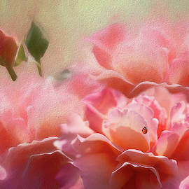 Romance A Trio Of Roses by Diane Schuster
