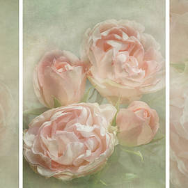 Romance of Roses by Claudia Moeckel