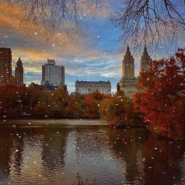 Romance of the Night - Central Park New York by Miriam Danar