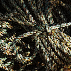 Rope And Texture 11 by Marty Saccone