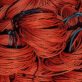 Rope and Texture 13 by Marty Saccone