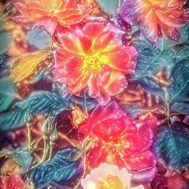 Rose 418 by Pamela Cooper