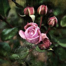 Rose Bud Dark by Anita Hubbard