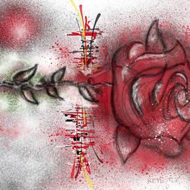 Rose Garden by Ricardo Mester