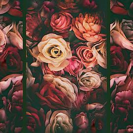 Rose Petal Triptych by Jessica Jenney