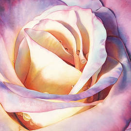 Rose Radiance by Sandy Haight