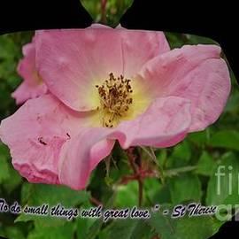 Rose Teapot w Little Flower Quote by GJ Glorijean