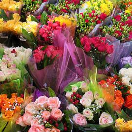 Roses In Perpetuity by David Zimmerman