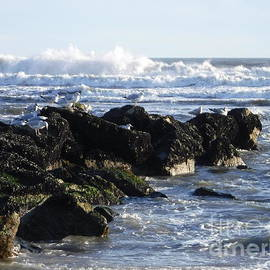 Long Beach Rough Winter Waters by Barbra Telfer