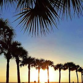 Round Dance of Palm Trees at Sunset by Lyuba Filatova