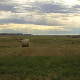 Round Hay Bales and Summer Sky by Kae Cheatham
