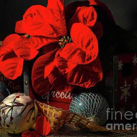 Round Leaf Poinsettia by Diana Mary Sharpton