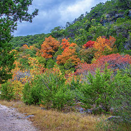 Rounding the Corner to Autumn by Lynn Bauer