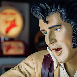 Route 66 Elvis by Dave Bowman