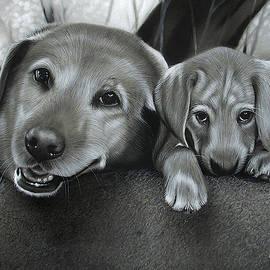 Roxy and Riley by Alaina Ferguson