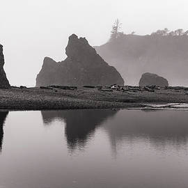 Ruby Beach 10-20 200 by Mike Penney