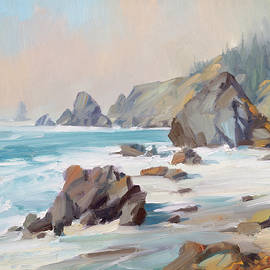 Rugged Coastline by Steve Henderson