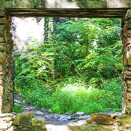 Ruins Framed by Mary Ann Artz