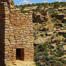 Ruins near Cortez Colorado by Jeff Swan