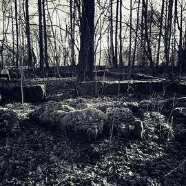 Ruins of the old house by Jouko Lehto