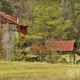 Rural Decay by Michelle Tinger