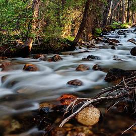 Rushing Fishhook Creek in Stanley Idaho USA by Vishwanath Bhat