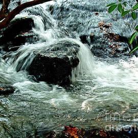 Rushing Rocky Creek by Peter Horrocks