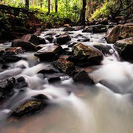 Rushing stream in the jungle by Vishwanath Bhat