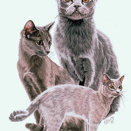 Russian Blue Collage by Barbara Keith