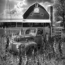 Rust in the Wildflowers in Black and White by Debra and Dave Vanderlaan