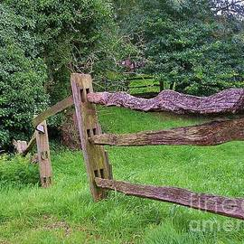 Rustic Fence At Bishops Waltham by Lesley Evered