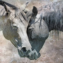 Rustic Horse Love by Jennie Marie Schell