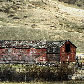 Rustic Outbuilding by Kae Cheatham