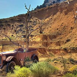 Rusty Car in Virginia City by Donna Kennedy