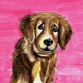 Sad Eyed Pup by Patty Donoghue
